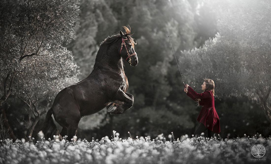 IMG_9299,-sophie,-narses,-photographe,-lumière,-nature,-portraitiste,-portrait,-shooting-photo,-annecy,-haute-savoie,-cavalier,-cheval,-équitation