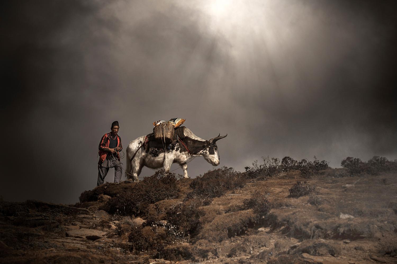 SN -IMG_4382-sophie-narses-photographe-italie-france-nouvelle-caledonie-iledeskye-voyage-aventure-book-zelande-portrait-bauges-bretagne-suisse-jura-nepal-tirages-art-cours-photo-paysages
