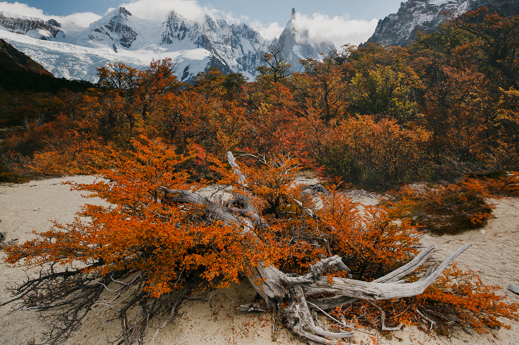 2I7B102520-patagonie-chili-sophie-narses-photographe-paysage-monde-annecy-tirages