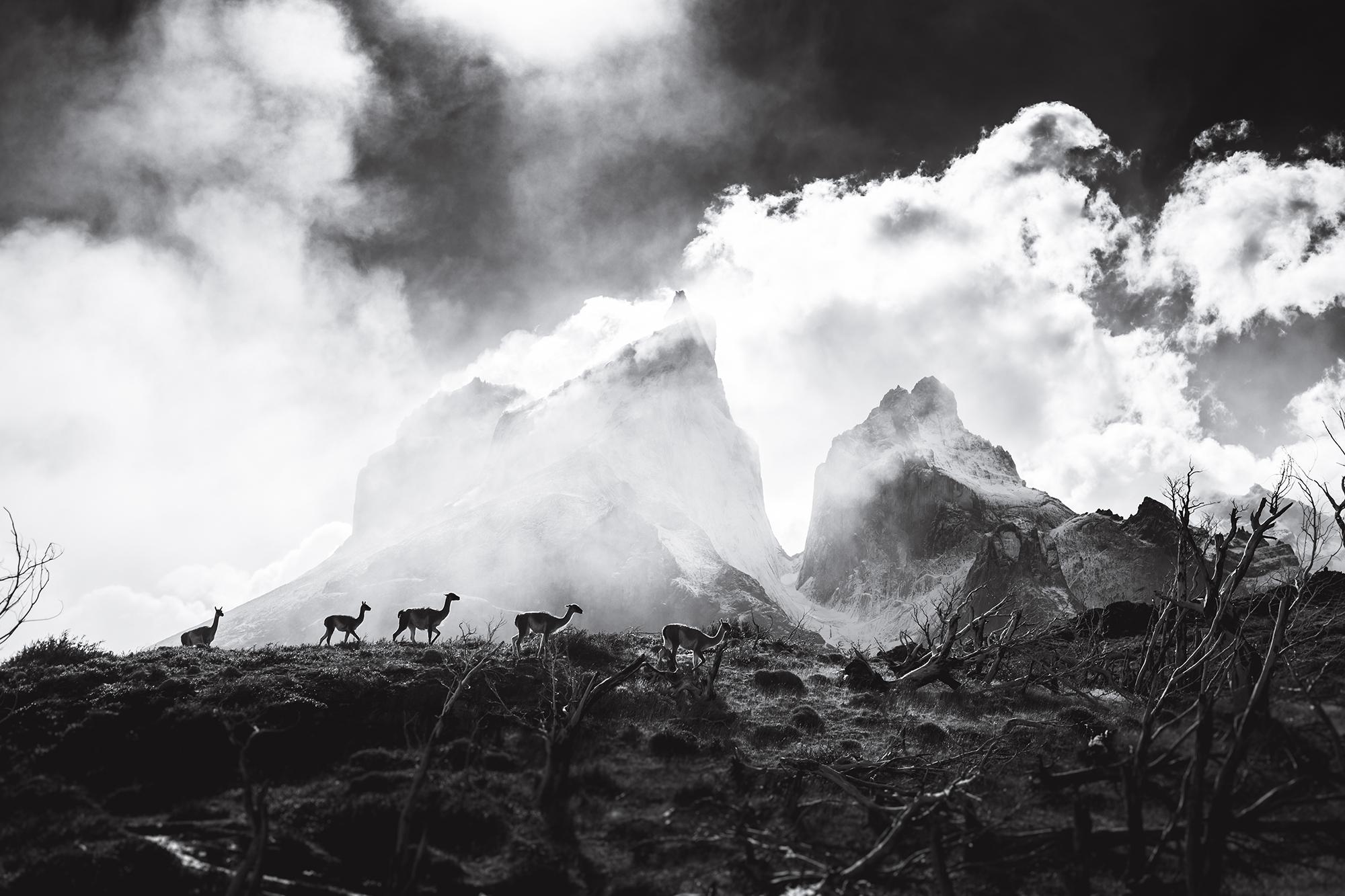 IMG_0186-patagonie-chili-sophie-narses-photographe-paysage-monde-annecy-tirages-voyage-art