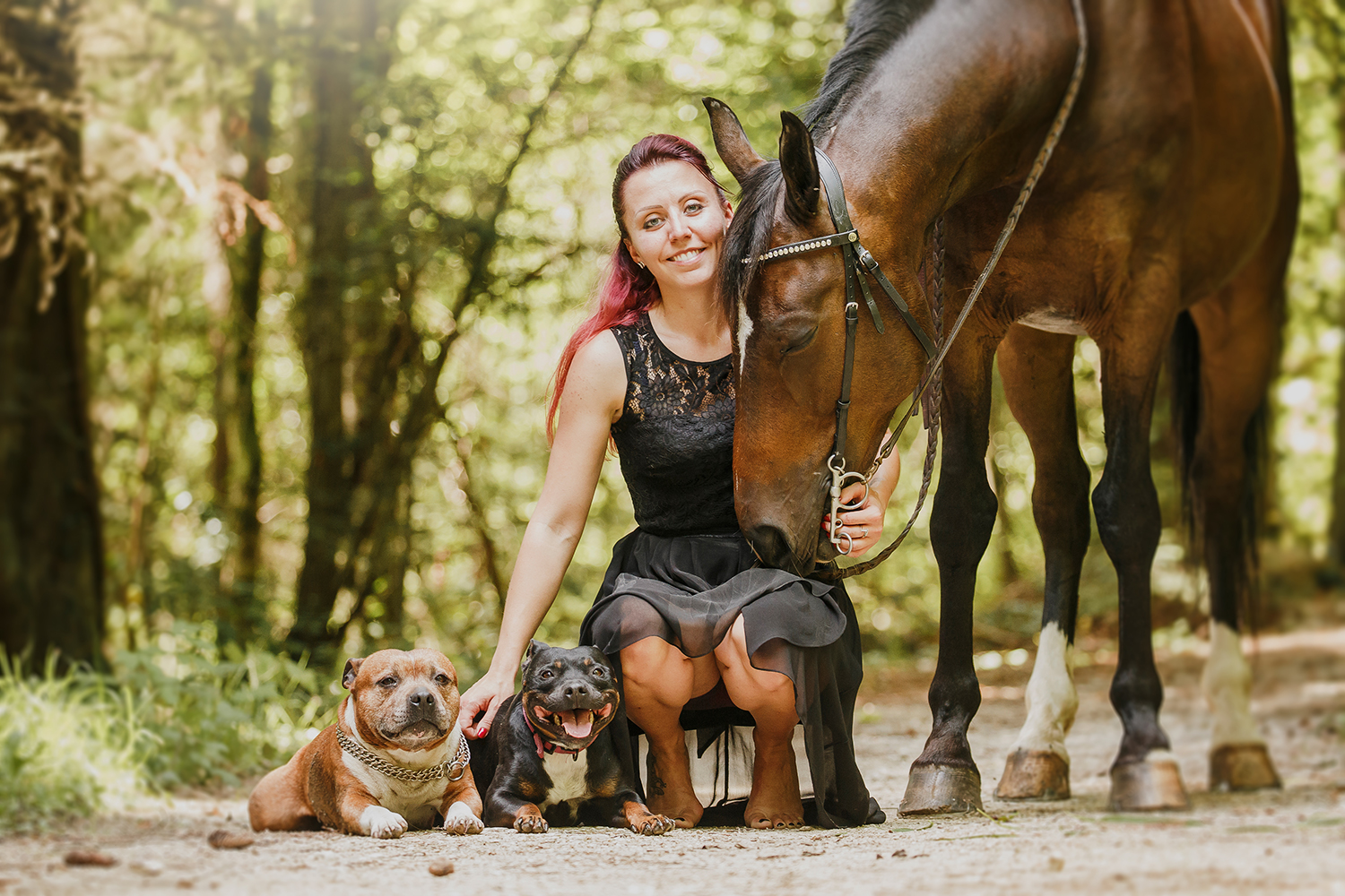 SN1_1616-sophie-narses-photographe-annecy-haute-savoie-book-shooting-portrait-geneve-suisse-famille-animaux-tirages-photo-modele-rhone-alpes-france-animaux-cheval-chien-grossesse-enfant-famille