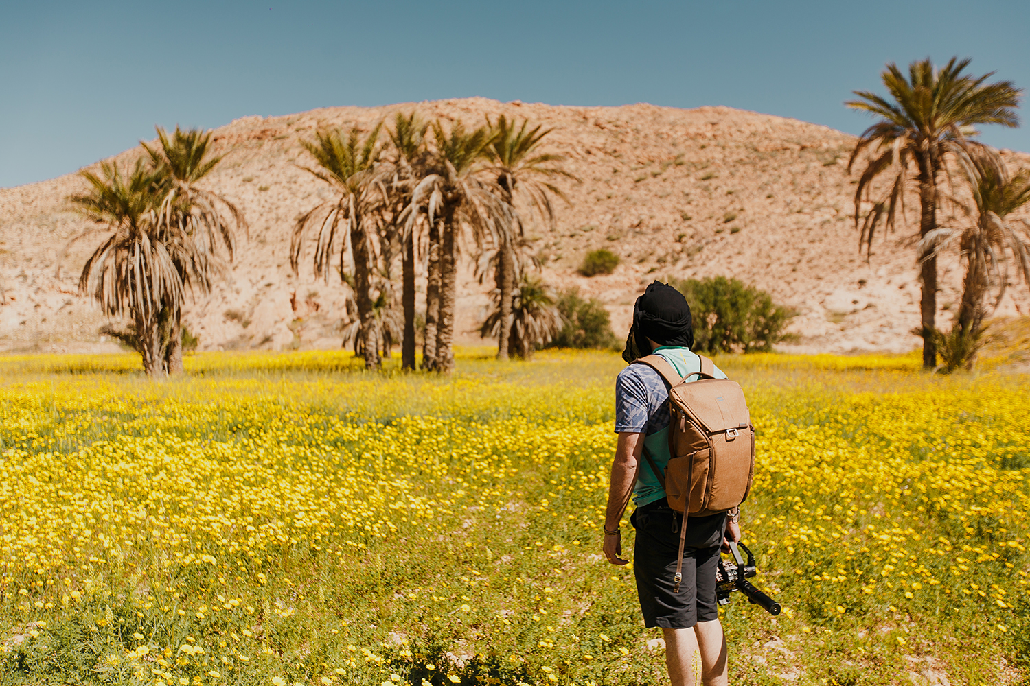 SN2_1517-sophie-narses-photographe-Tunisie-Voyage-book-shooting-geneve-mariage-suisse-famille-animaux-tirages-art-cours-photo-paysages-desert